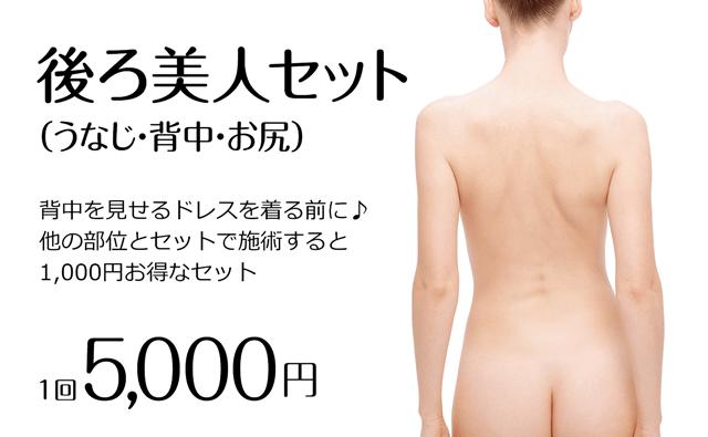 後ろ髪美人セット 1回5000円