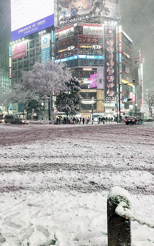 東京で大雪2