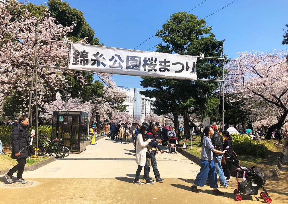 錦糸公園桜まつり