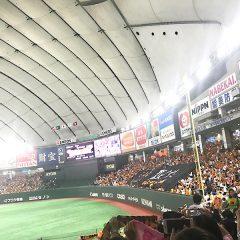 巨人野球観戦
